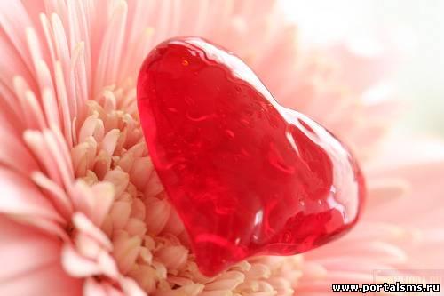 Смс валентинки день святого валентина